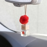러브 플라워 차량용 디퓨저 - 레드 카네이션