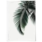 패브릭 천 포스터 F035 식물 야자수 나뭇잎 A