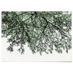 패브릭 포스터 F120 식물 풍경 액자 나무 그늘 B