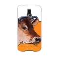 ���������̽� CB1923.Dairy Cow