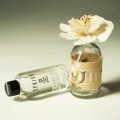 Scent In A Bottle -SPRING