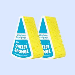 이것은 치즈인가, 스펀지인가?