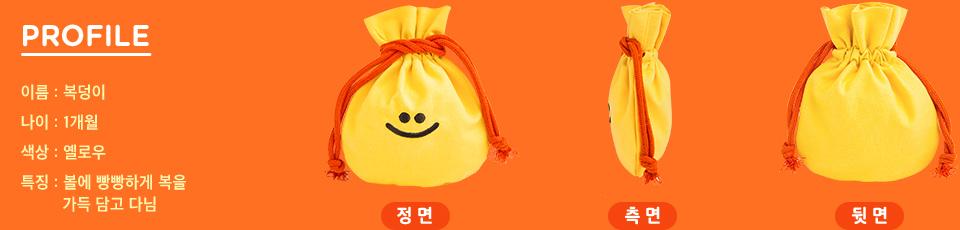 PROFILE - 이름:복덩이, 나이:1개월, 색상:옐로우, 특징:볼에 빵빵하게 복을 가득 담고 다님