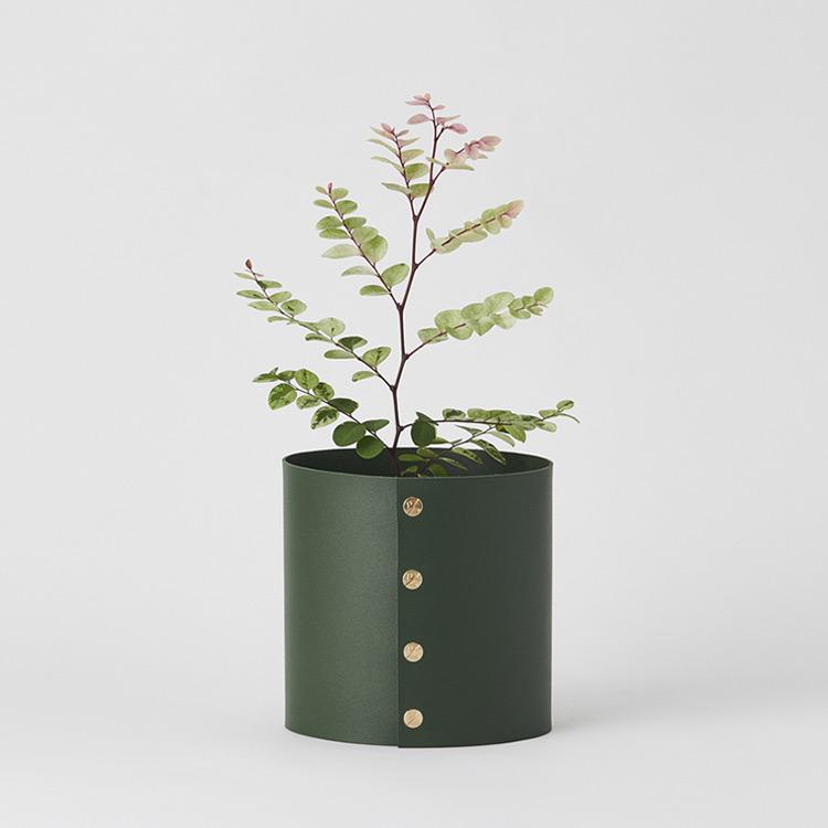 Plats open! 식물에 즐거움을 더하다